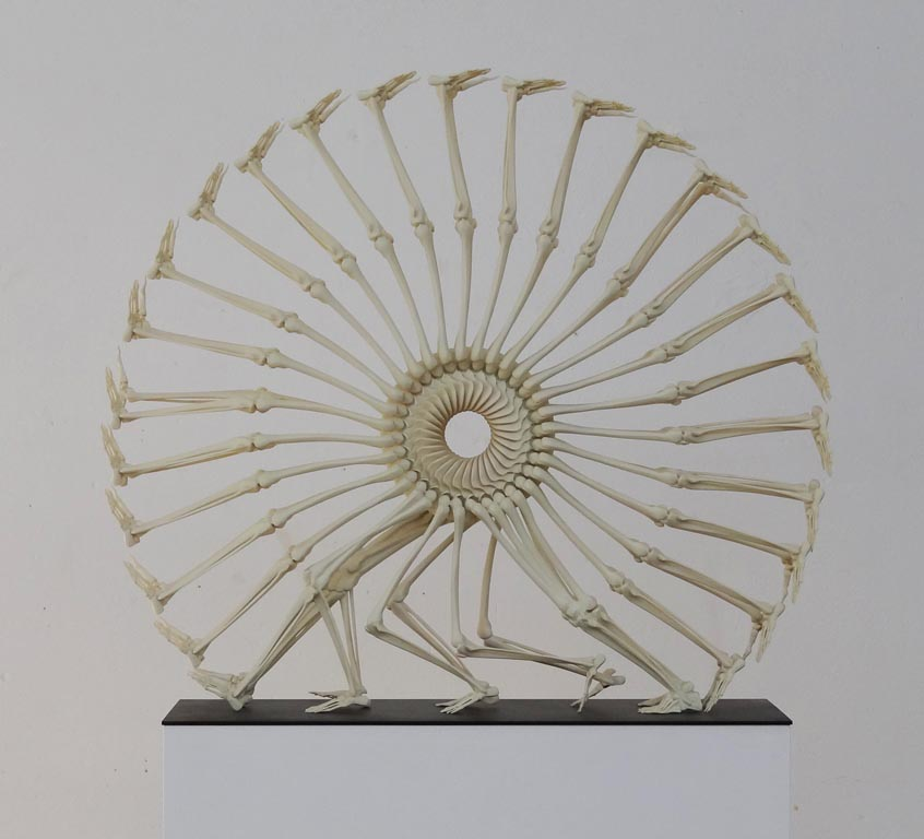 Wheel of Life, 2012