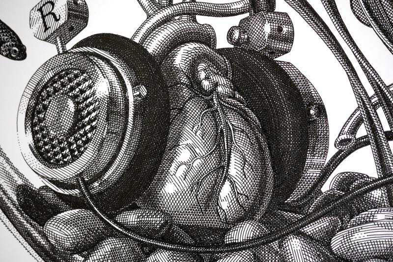 Prehensility / Detail