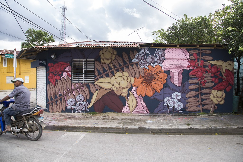 Pastel - Mural for The ArteSano Project, Rio San Juan, Dominican Republic, 2014