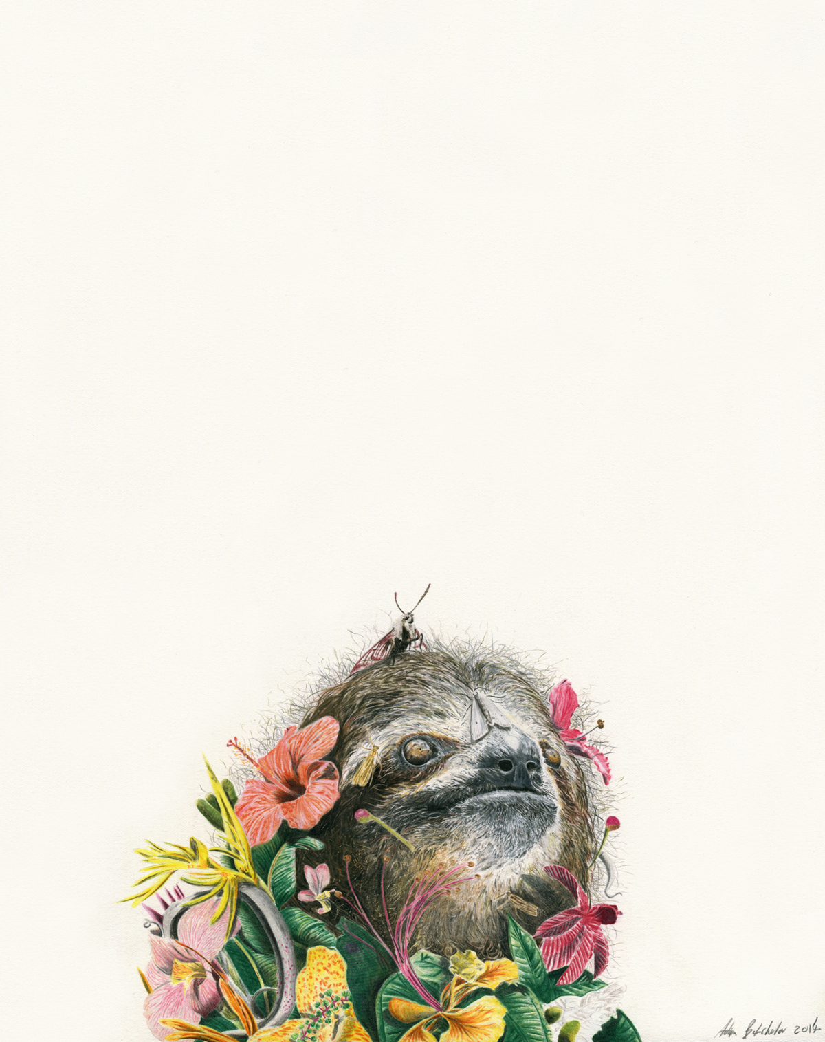A. Batchelor - What does your flower sloth soul look like?