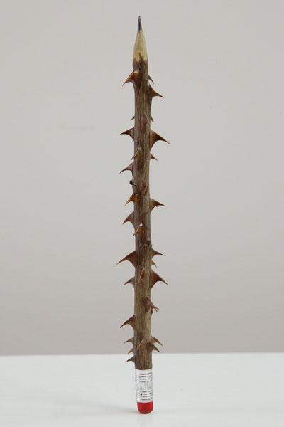 SeyoCizmic - Illiteracy, Rose stem, pencil lead and eraser