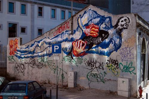 CANEMORTO in Lisbon