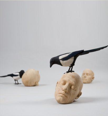 Gerard Mas - Ornithologies