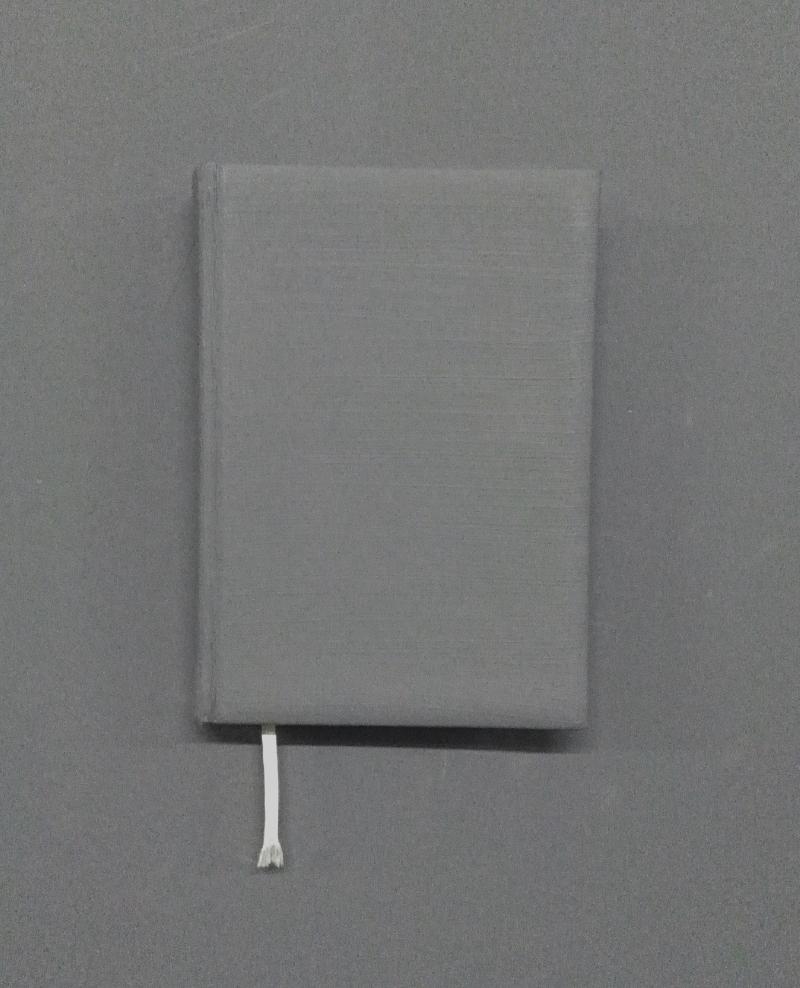 Maria Orosan - Telea - Vechea agendă ascunsă, object, 2002 personal agenda, text, 2016
